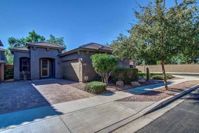 3815 E Kesler Lane, Gilbert, AZ 85295 (MLS #6012056) :: Lucido Agency