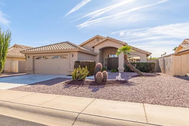 14617 W Bison Path, Surprise, AZ 85374 (MLS #6012081) :: neXGen Real Estate