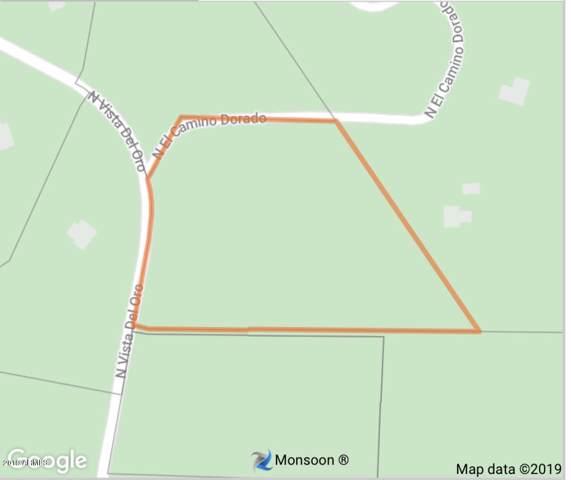 14705 N El Camino Dorado, Fort McDowell, AZ 85264 (MLS #6012116) :: Nate Martinez Team