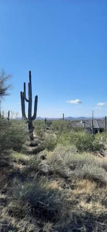 36441 N 58TH Street, Cave Creek, AZ 85331 (MLS #6012252) :: neXGen Real Estate