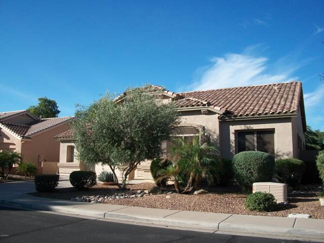 5042 S Marigold Way, Gilbert, AZ 85298 (MLS #6012308) :: Revelation Real Estate