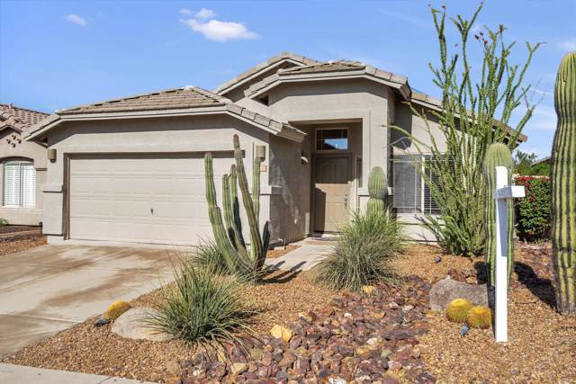 4422 E Rowel Road, Phoenix, AZ 85050 (MLS #6012313) :: The Everest Team at eXp Realty