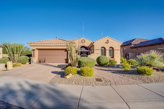 3538 E Robin Lane, Phoenix, AZ 85050 (MLS #6012372) :: My Home Group
