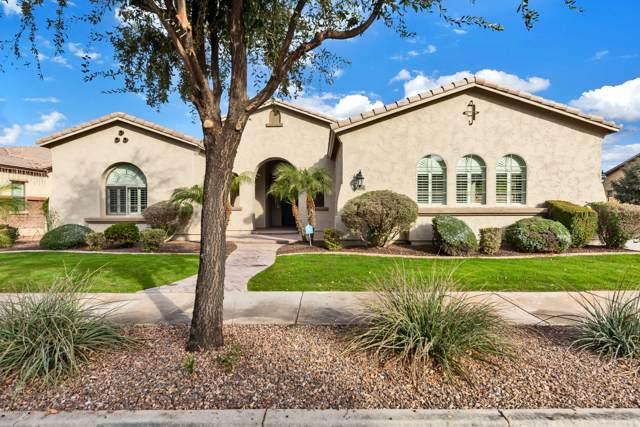 18654 E Druids Glen Road, Queen Creek, AZ 85142 (MLS #6012441) :: My Home Group