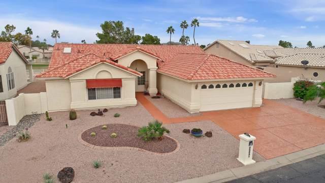 25231 S Buttonwood Drive, Sun Lakes, AZ 85248 (MLS #6012489) :: Selling AZ Homes Team
