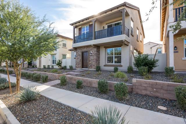 29277 N 123RD Glen, Peoria, AZ 85383 (MLS #6012512) :: Team Wilson Real Estate