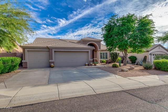 26221 N 46TH Place, Phoenix, AZ 85050 (MLS #6012516) :: Team Wilson Real Estate