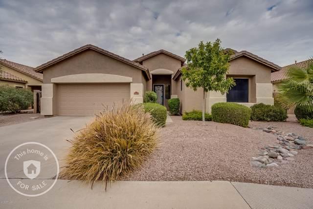 4242 E Torrey Pines Lane, Chandler, AZ 85249 (MLS #6012523) :: Yost Realty Group at RE/MAX Casa Grande