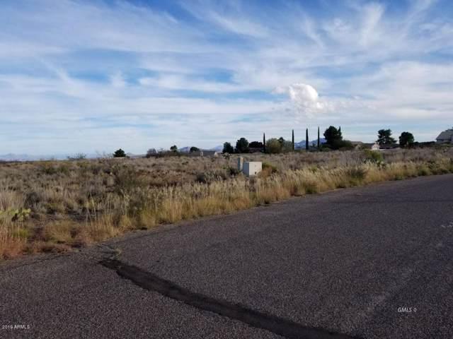Lot 41&42 Alhambra Drive, Globe, AZ 85501 (MLS #6012563) :: Homehelper Consultants