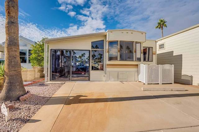 528 S Cheyenne Drive, Apache Junction, AZ 85119 (MLS #6012749) :: Santizo Realty Group