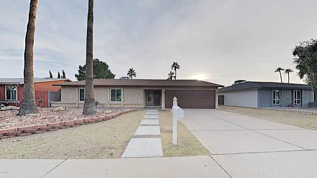 3535 E Campo Bello Drive, Phoenix, AZ 85032 (MLS #6012751) :: The Kenny Klaus Team