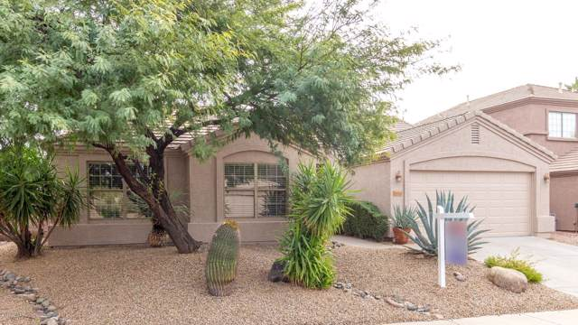 26203 N 43rd Place, Phoenix, AZ 85050 (MLS #6012818) :: Revelation Real Estate
