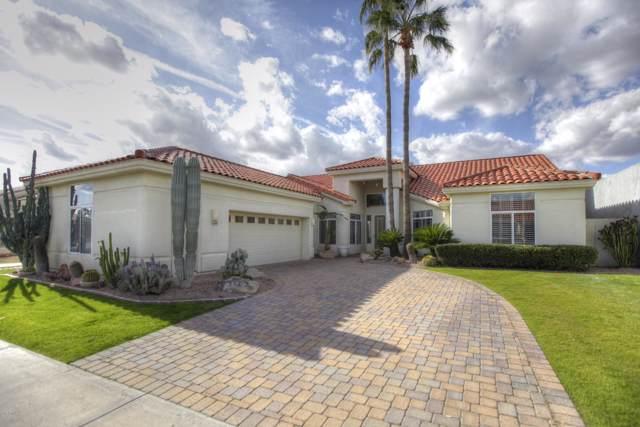 11696 N 81ST Street, Scottsdale, AZ 85260 (MLS #6012910) :: Revelation Real Estate