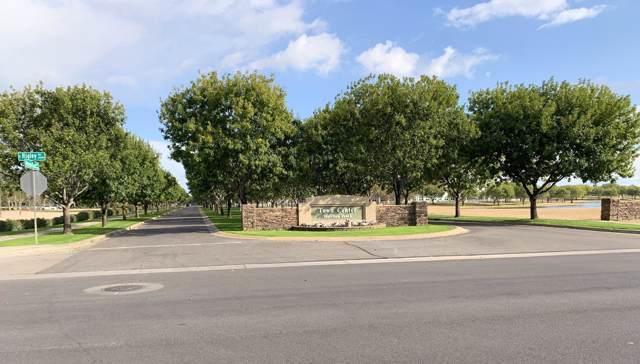 3410 E Mesquite Street, Gilbert, AZ 85296 (MLS #6012965) :: My Home Group