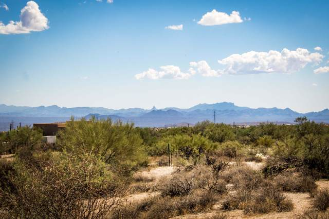 323xx E 136 Street, Scottsdale, AZ 85262 (MLS #6012982) :: The W Group