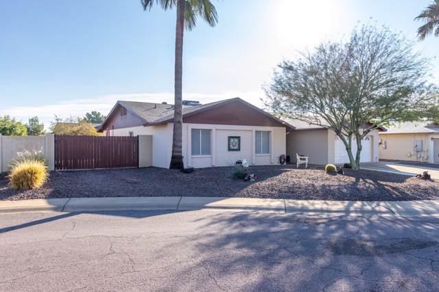 15809 N 48TH Drive, Glendale, AZ 85306 (MLS #6013069) :: REMAX Professionals