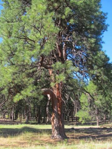 1021 Stone Hollow Loop, Williams, AZ 86046 (MLS #6013120) :: The W Group