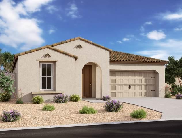 828 E Amberwood Drive, Phoenix, AZ 85048 (MLS #6013127) :: The Kenny Klaus Team