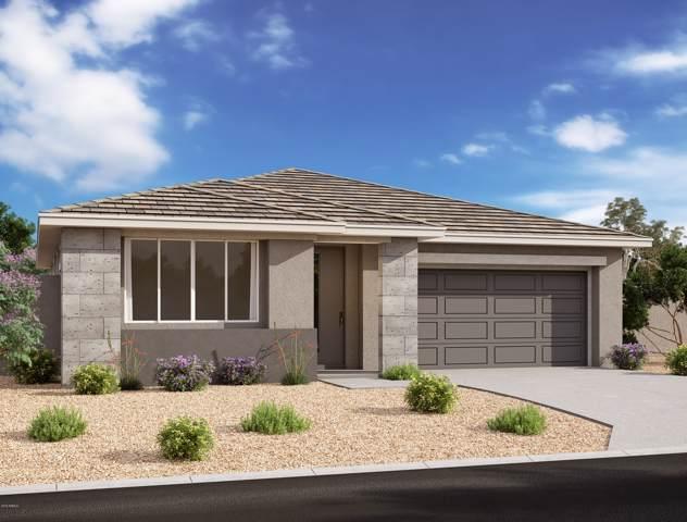 824 E Amberwood Drive, Phoenix, AZ 85048 (MLS #6013132) :: The Kenny Klaus Team