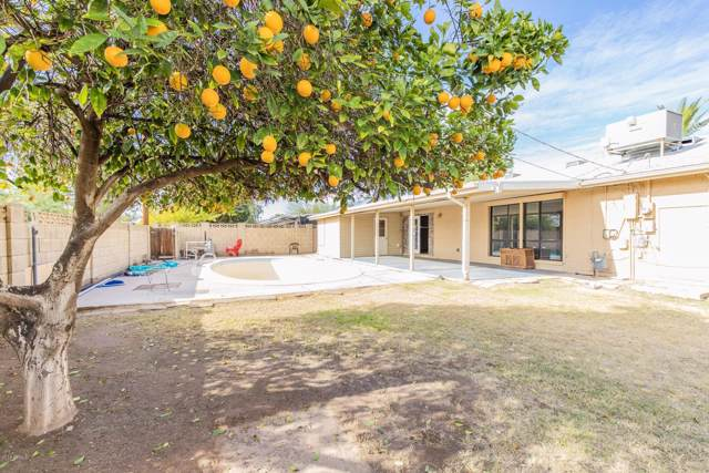 7537 E Edgemont Avenue, Scottsdale, AZ 85257 (MLS #6013137) :: Brett Tanner Home Selling Team