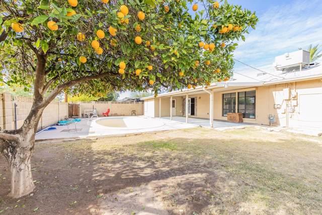 7537 E Edgemont Avenue, Scottsdale, AZ 85257 (MLS #6013137) :: The Kenny Klaus Team
