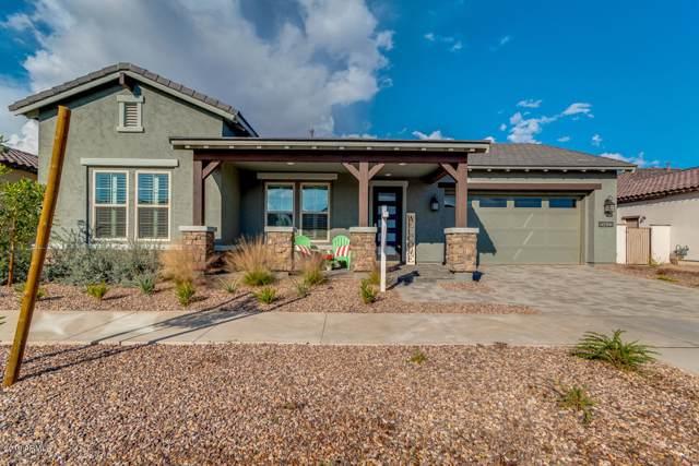 10432 E Tiger Lily Avenue, Mesa, AZ 85212 (MLS #6013226) :: Revelation Real Estate