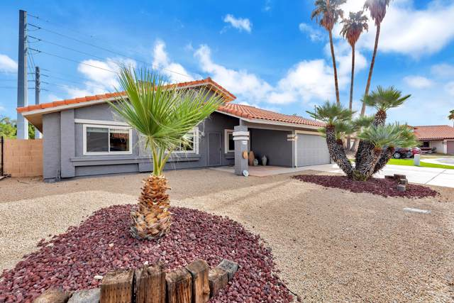 1519 N Santa Anna Court, Chandler, AZ 85224 (MLS #6013283) :: Openshaw Real Estate Group in partnership with The Jesse Herfel Real Estate Group