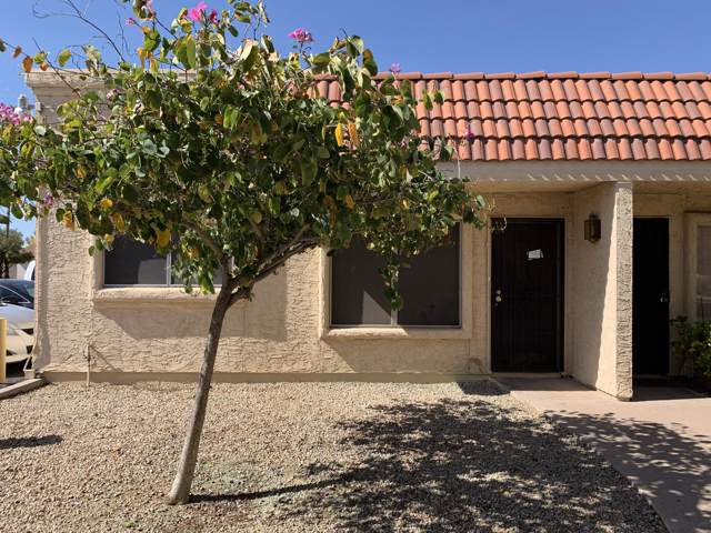 17241 N 16th Drive #8, Phoenix, AZ 85023 (MLS #6013315) :: Dijkstra & Co.
