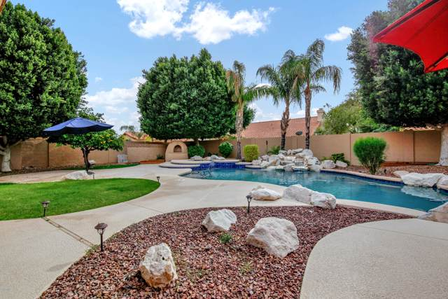 1585 W Desert Broom Drive, Chandler, AZ 85248 (MLS #6013403) :: Openshaw Real Estate Group in partnership with The Jesse Herfel Real Estate Group