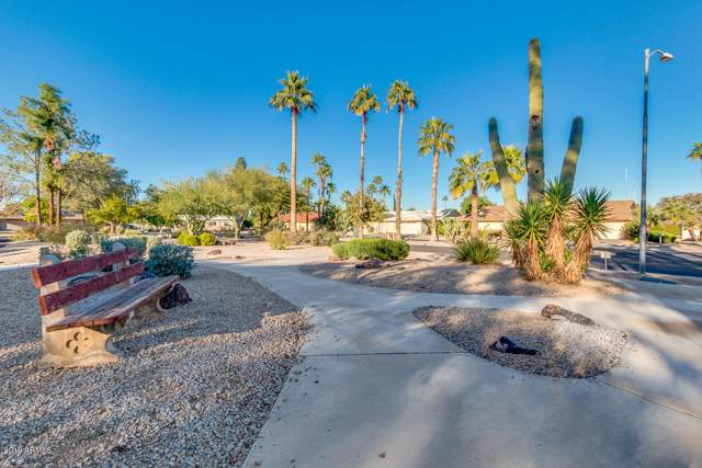 17613 N 105TH Avenue, Sun City, AZ 85373 (MLS #6013426) :: Occasio Realty