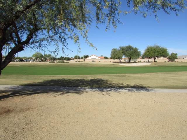 13624 W Wagon Wheel Drive, Sun City West, AZ 85375 (MLS #6013476) :: The Ramsey Team