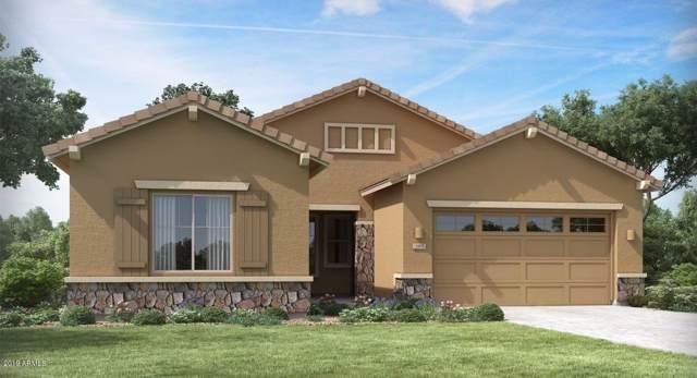 21241 W Wilshire Drive, Buckeye, AZ 85396 (MLS #6013505) :: The Kenny Klaus Team