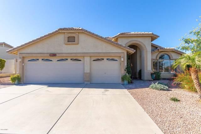 11206 S Hopi Street, Goodyear, AZ 85338 (MLS #6013568) :: The Kenny Klaus Team