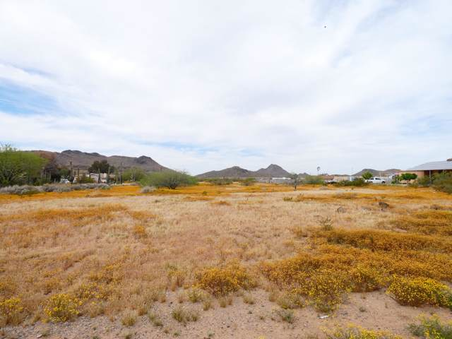 28008 N 37TH Avenue, Phoenix, AZ 85083 (MLS #6013726) :: The Daniel Montez Real Estate Group