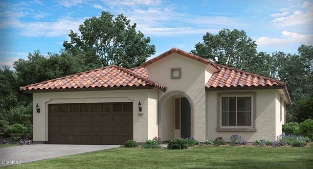 20416 W Calle Encorvada Lane, Buckeye, AZ 85396 (MLS #6013736) :: Riddle Realty Group - Keller Williams Arizona Realty