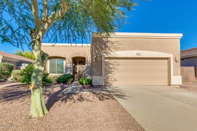 8214 W Salter Drive, Peoria, AZ 85382 (MLS #6013895) :: Devor Real Estate Associates