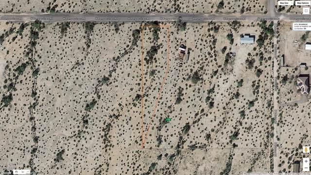51405 W Pampas Grass Road, Maricopa, AZ 85139 (MLS #6013916) :: The Kenny Klaus Team