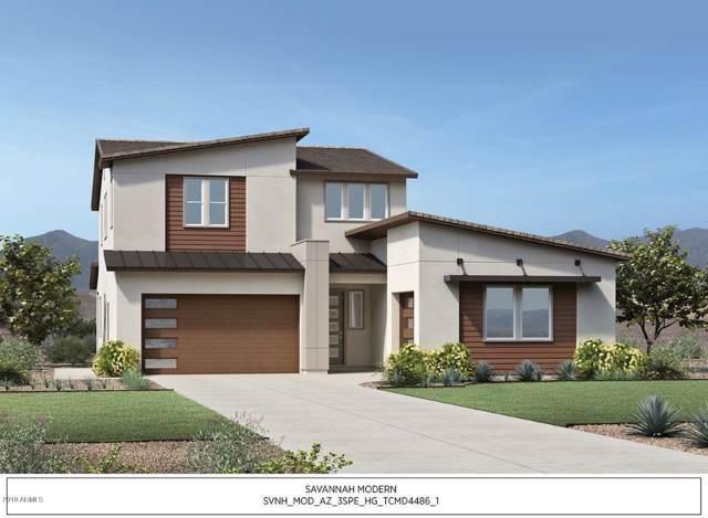 23343 S 228th Street, Queen Creek, AZ 85142 (MLS #6013974) :: Dijkstra & Co.