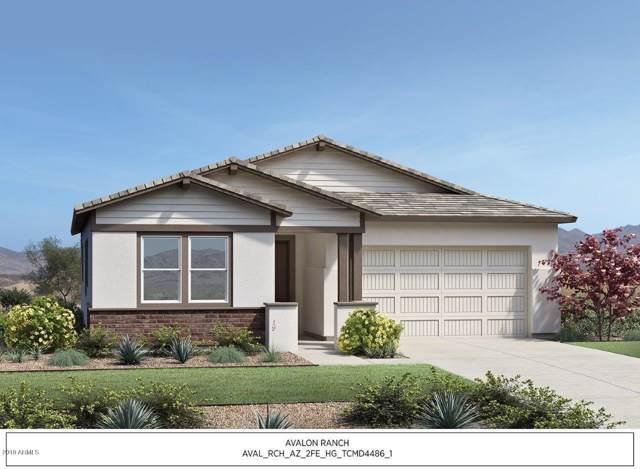 22709 E Calle Luna, Queen Creek, AZ 85142 (MLS #6014015) :: Dijkstra & Co.