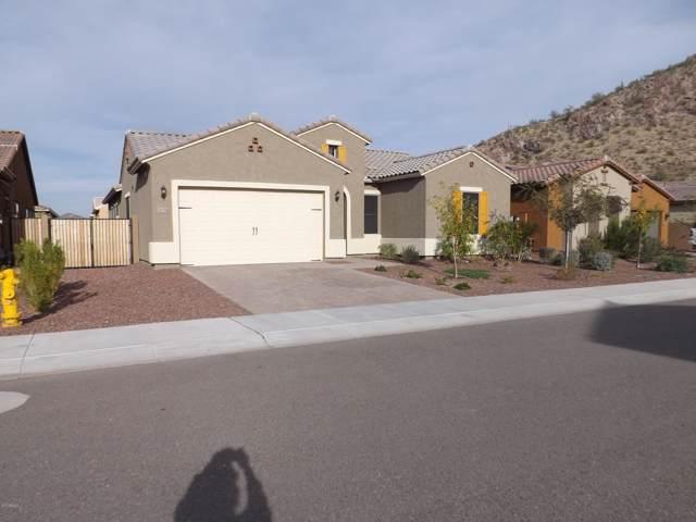 10274 W Fetlock Trail, Peoria, AZ 85383 (MLS #6014064) :: The Kenny Klaus Team