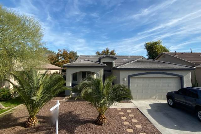 6527 S 5TH Way, Phoenix, AZ 85042 (MLS #6014066) :: The Property Partners at eXp Realty