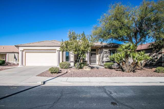 3560 E Torrey Pines Lane, Chandler, AZ 85249 (MLS #6014250) :: Dijkstra & Co.