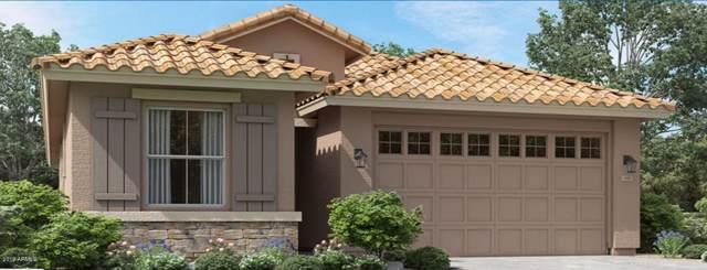5530 S Vincent, Mesa, AZ 85212 (MLS #6014252) :: My Home Group