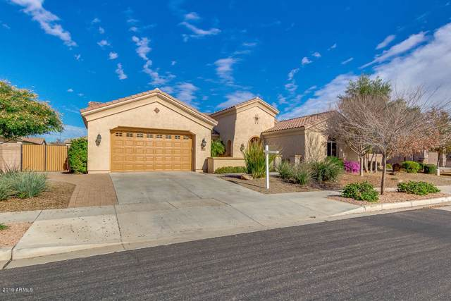 668 W Coconino Place, Chandler, AZ 85248 (MLS #6014267) :: Dijkstra & Co.