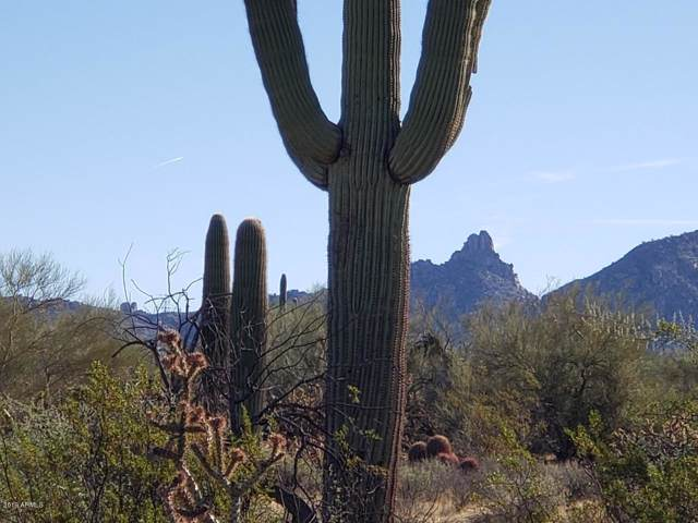 0 N 79TH Street, Scottsdale, AZ 85266 (MLS #6014315) :: neXGen Real Estate