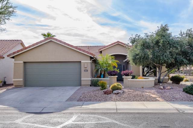 15699 W Earll Drive, Goodyear, AZ 85395 (MLS #6014390) :: The C4 Group