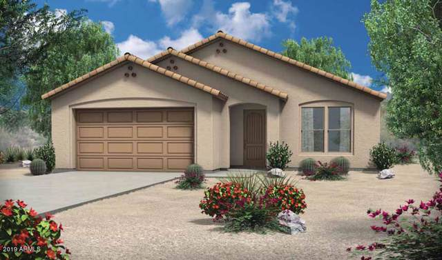 17147 W Molly Lane, Surprise, AZ 85387 (MLS #6014465) :: The Kenny Klaus Team