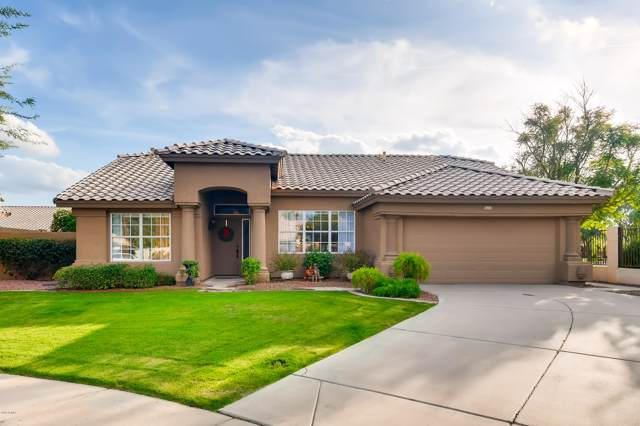 349 E Appaloosa Court E, Gilbert, AZ 85296 (MLS #6014546) :: Sheli Stoddart Team | M.A.Z. Realty Professionals