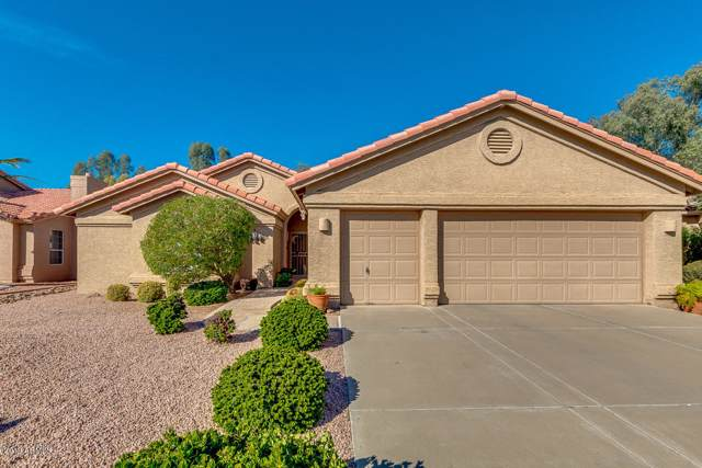 23606 S Rosecrest Drive, Sun Lakes, AZ 85248 (MLS #6014599) :: The C4 Group
