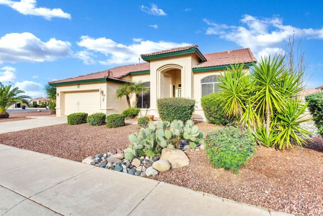 11662 W Cactus Wren Court, Surprise, AZ 85378 (MLS #6014607) :: Kortright Group - West USA Realty